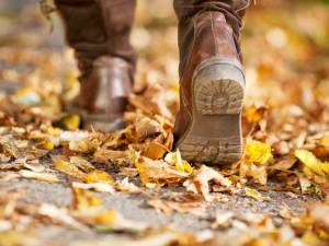 britains-best-autumn-walks